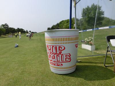 Japan Pro Golf Championship
